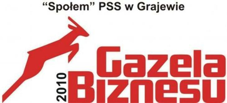GAZELE BIZNESU 2010
