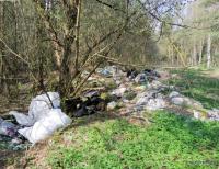 Nawet 5 tys. zł grzywny za zaśmiecanie lasu