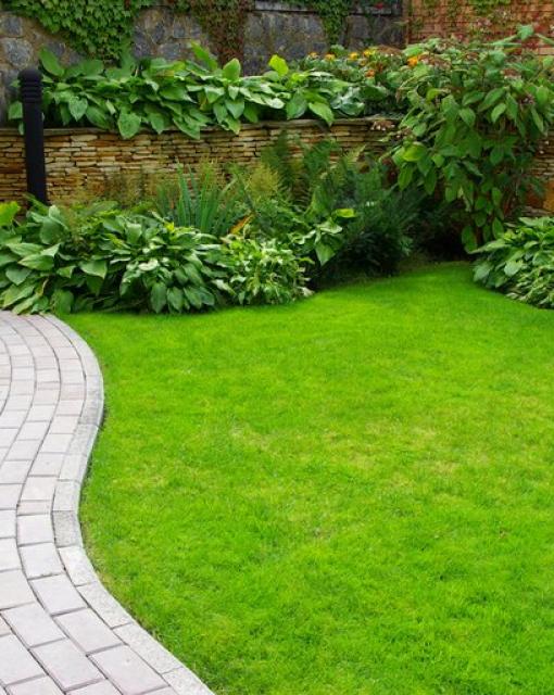 Jak osiągnąć piękny trawnik?