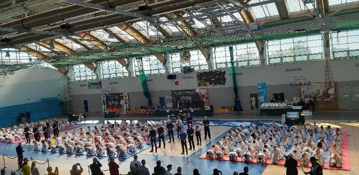 Ookami - kolejne dobre walki turniejowe