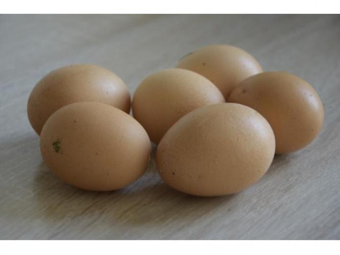 Grajewo ogłoszenia: Sprzedam jajka wiejskie, ekologiczne na naturalnej paszy bez...