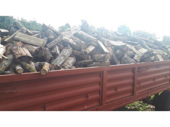 Grajewo ogłoszenia: Sprzedam przyczepę drzewa pocięte sosna, topola; około 6 m...