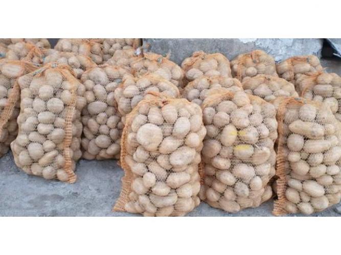 Grajewo ogłoszenia: Sprzedam ziemniaki jadalne Irga, winieta, rikardo. 1,30/kg Bela...